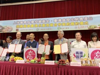 高雄芭樂又簽約賣出281公噸 農業局長:高市府變農糧署?