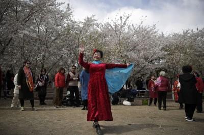 自己人都受不了了!北京擬禁止不文明中客進公園