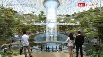 新加坡機場沒有極限! 世界最高絕美「雨漩渦」4月開幕