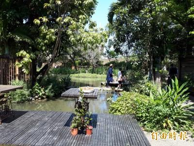 新竹市客家桐花祭 藝桐去郊遊探索都市裏的客家秘境