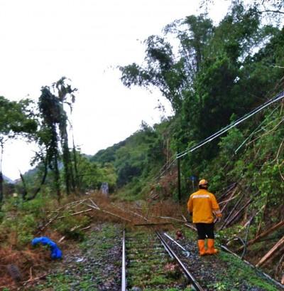 大雨樹倒佔鐵道!集集支線火車搶通 影響70人