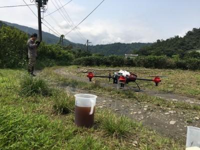 茶園試辦無人機噴液肥 青農驚:效率快3倍