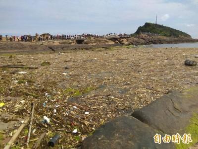 獨家》北海岸湧現大批海漂垃圾 野柳女王頭也遭殃