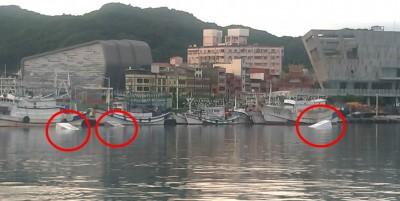 基隆八斗子漁港 驚傳3輛貨車落海