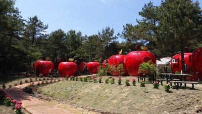超可愛!福壽山農場長出蘋果屋