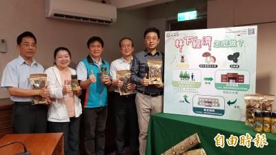 照顧林農生計 農委會首波開放林地合法種菇養蜂