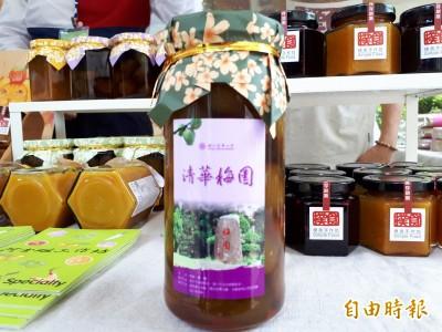 新竹「清華梅園」脆梅 力挺台灣綠色小農