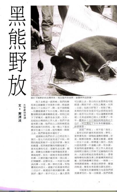 南安小熊妹野放有前例! 國內首次野放黑熊是1991年