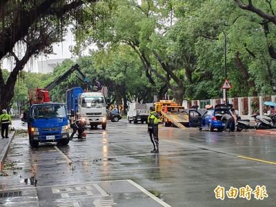 北市南昌路路樹倒塌 一小客車遭壓