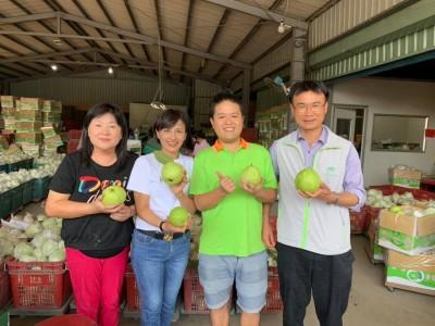 藍委稱芭樂產銷失調 邱議瑩開嗆:國民黨不要再消費農民