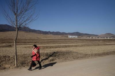 極端氣候與國際制裁 北韓陷10年來最大糧食危機