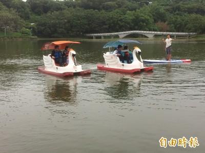 竹市立式划槳強勢回歸 2外國冠軍選手體驗天鵝船