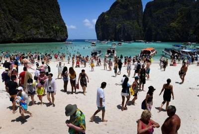 救珊瑚! 李奧納多《海灘》取景地 泰國瑪雅灣閉島2年