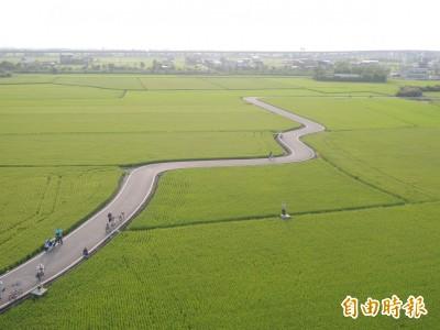 熱氣球蓄勢待發! 這4天載客鳥瞰「宜蘭版伯朗大道」美景