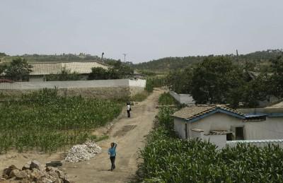 北韓37年來最嚴重乾旱 1000萬人陷糧食危機