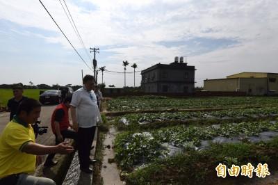 桃竹豪雨瓜類農損 農委會啟動現金救助