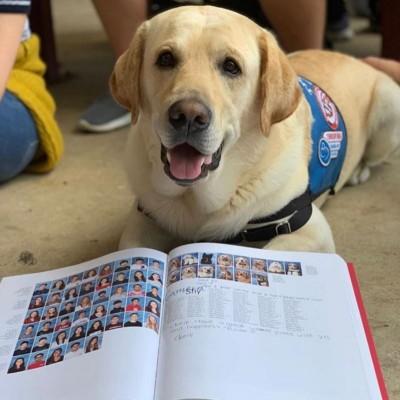 超暖! 陪師生走出佛州槍案陰影 14隻「狗醫生」同列紀念冊