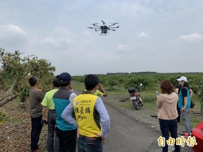 創舉!無人機幫農民「空運」愛文芒果 一次扛40公斤