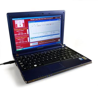 練蠱?身懷21世紀六大病毒 筆電拍賣價飆破3800萬