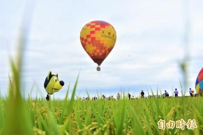 水稻田冒出熱氣球... 宜蘭人感動「原來家鄉這麼美」