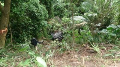 樹林大同山小客車撞行人 跌落10公尺深邊坡