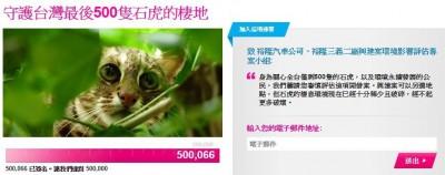 五月天怪獸倡議連署守護石虎  50萬人目標達陣!