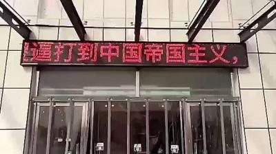 中國詭異「管制名單」...狗、信鴿、LED顯示器都入列