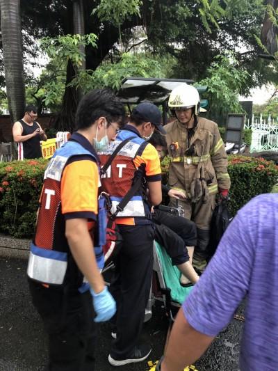 台南大雷雨 成大校內驚傳鳳凰樹倒壓傷男學生