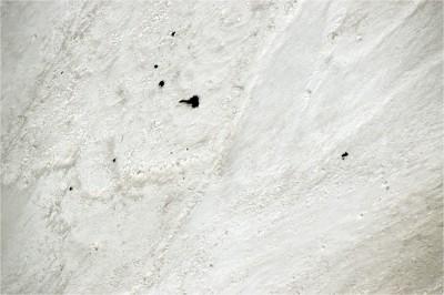 回家了!喜馬拉雅山脈雪崩滅團8死 尋獲7人遺體