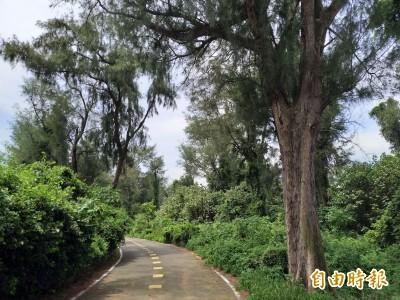 被遺忘的竹北海岸原生林 在地人發聲盼縣府重視