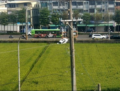 田中到了!小客車疑倒車不慎變「割稻」 網友見照笑翻