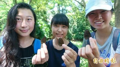 暑假玩一波! 關子嶺「蝴蝶遊樂園」開園了