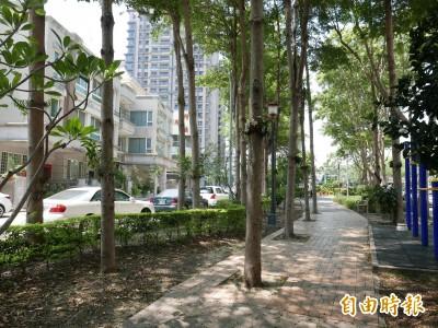 4棵大樹豎立梅川園道路中央 竟是建商種來擋路沖…