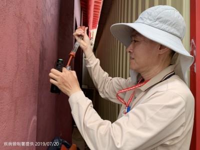 台南東區新增1登革熱病例 全市累積12例