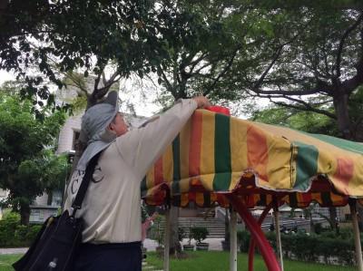 台南本土登革熱增至12例 境外移入增至24例