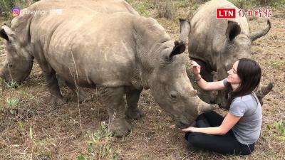 正妹犀牛媽媽! 黏人犀牛寶寶找她討抱抱討親親
