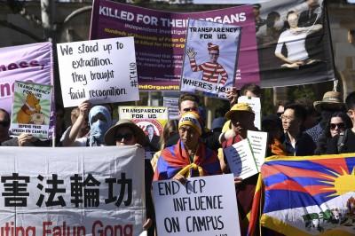 澳洲留學生聲援香港反送中 中國家人遭當局恐嚇