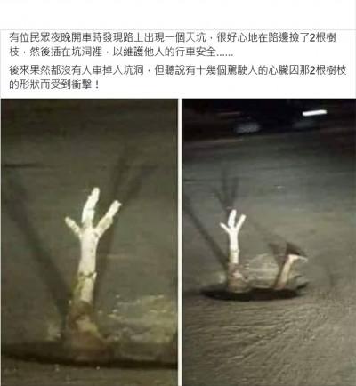 2根樹枝救了不少人也嚇壞不少人! 原來是因為...
