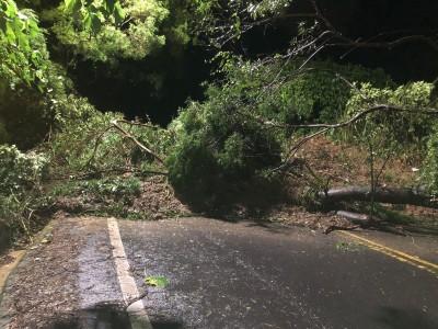 豪雨深夜炸彰化 山腳路沿線多處坍方封閉