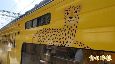 石虎彩繪列車被批像花豹 觀光局忍痛全塗掉!