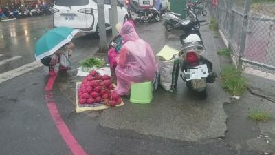 白鹿挾風雨來襲 台東賣菜阿嬤冒險擺攤