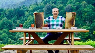 熊熊認證的美味!阻止不了偷蜜 蜂農出奇招聘熊當「試吃員」