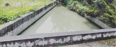 住家旁溝渠落水 婦人溺斃