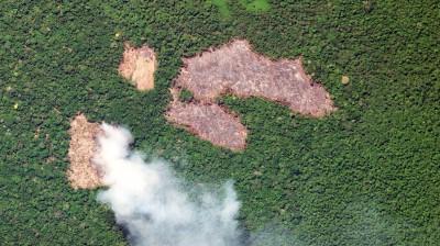 搶救亞馬遜雨林! 巴西禁止焚燒2個月