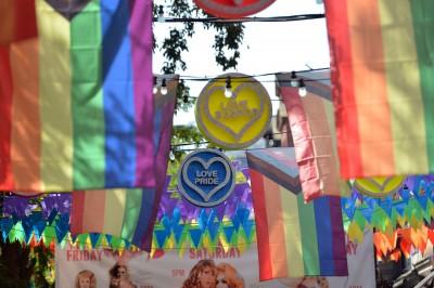 歐美研究:同性性行為非由單一基因決定
