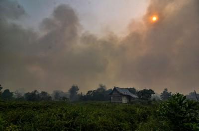 印尼大火 馬來西亞灰頭土臉 逾2400間學校停課