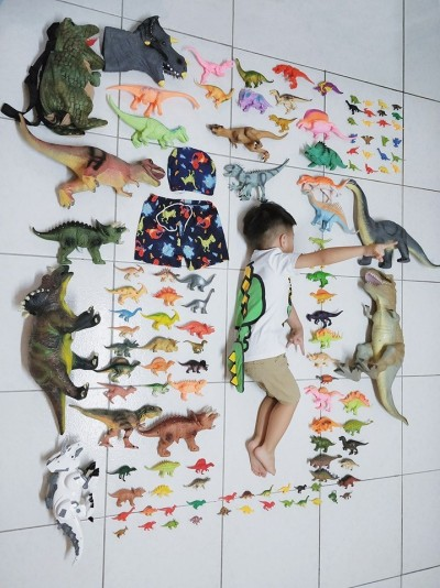 超壯觀「恐龍迷」開箱文 網友驚嘆:這個小男孩很專業