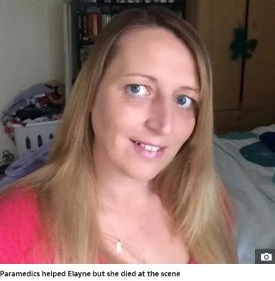替男友養2犬  英婦遭「攻擊」身亡