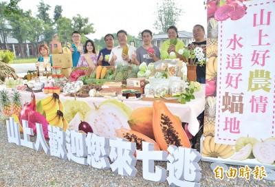 雙十連假好去處 來台南山上看水道、買水果