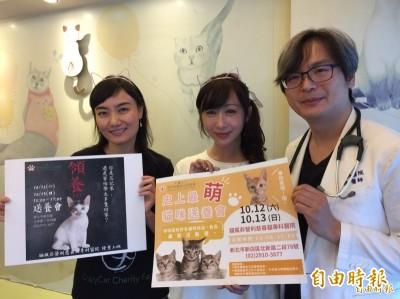 小英被造謠帶貓看醫生找百人陪同 她還原當時真相